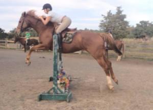 Abbi Jump