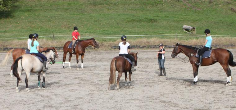 group-horseback-riding-lessons