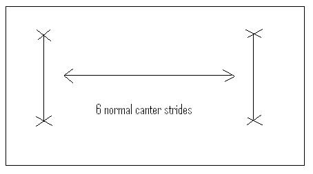 Canter Pole Diagram
