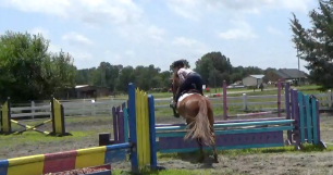 Oxer-to-vertical-rollback