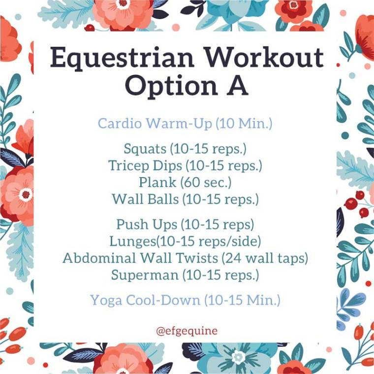 EFG Equine Equestrian Gym Workout A